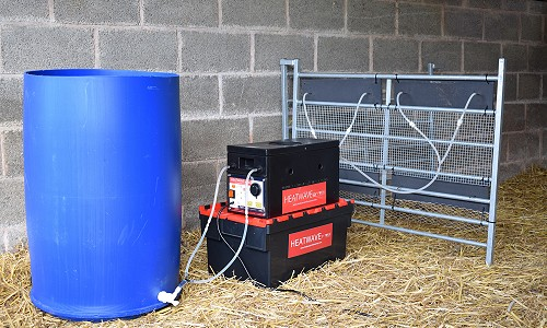 Heatwave set up for Calves